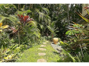 Backyard garden with exotic palms, citrus, and large mature tree